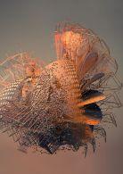 The complete motion capture digital art