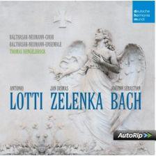 Back Lotti Zelenka