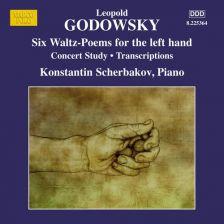 8 225364. GODOWSKY Piano Music Vol 12
