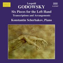 8 225367. GODOWSKY Piano Music Vol 13
