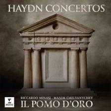 2564 605204. HAYDN Concertos