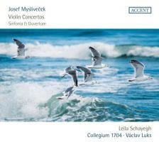 ACC24336. MYSLIVEČEK 3 Violin Concertos. Sinfonia