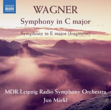 8 573413. WAGNER Symphony in C