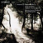 BIS2253. BRAHMS Symphony No 2 (Dausgaard)