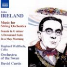 8 571372. IRELAND Music for String Orchestra